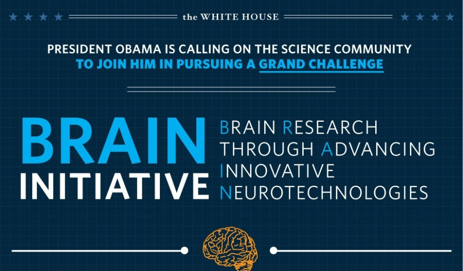 wh_brain_mapping_infographic_2013_0
